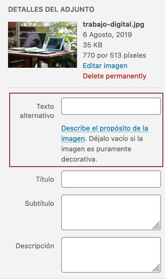 SEO: Agregar texto alternativa a las imágenes