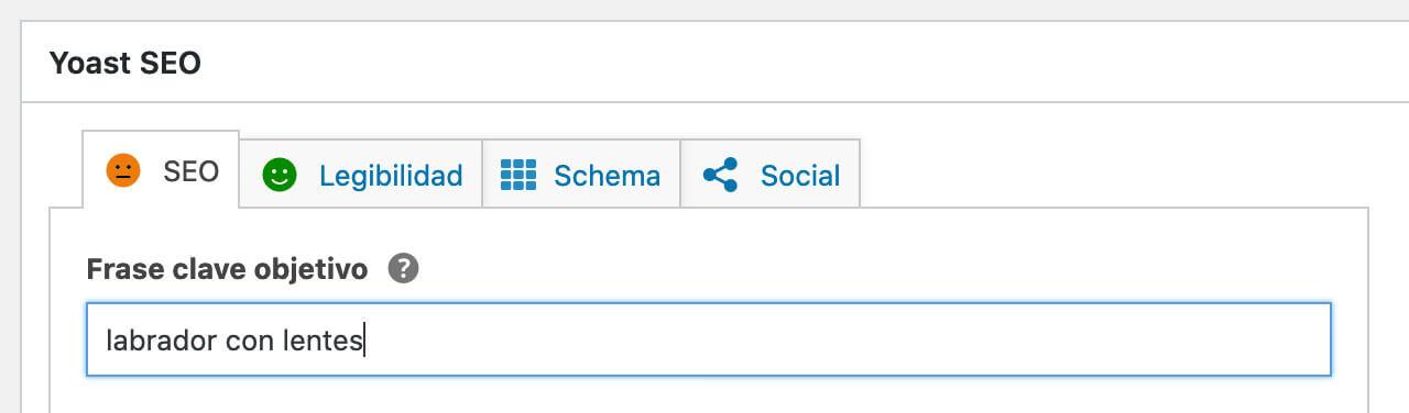 Yoast SEO - Definir frase clave para optimizar contenido para buscadores